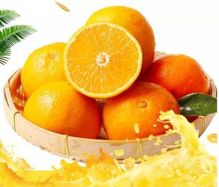 蒲江爱媛果冻橙